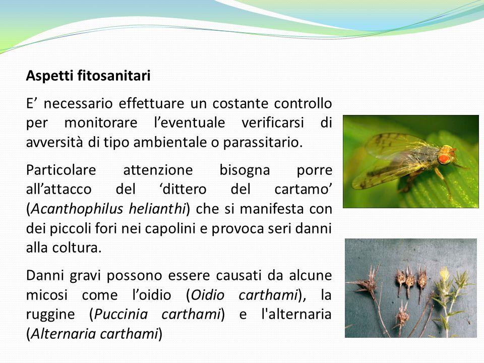 Aspetti fitosanitari E' necessario effettuare un costante controllo per monitorare l'eventuale verificarsi di avversità di tipo ambientale o parassita