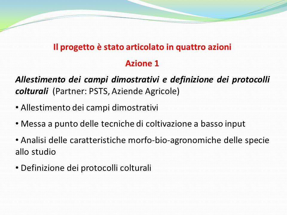 Il progetto è stato articolato in quattro azioni Azione 1 Allestimento dei campi dimostrativi e definizione dei protocolli colturali (Partner: PSTS, A