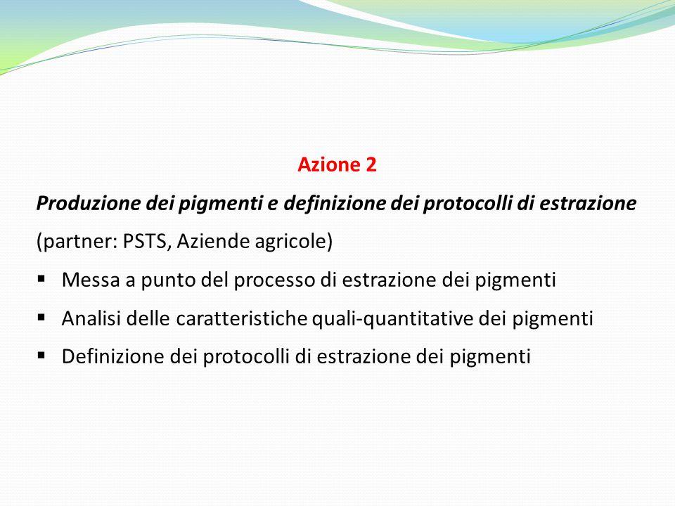 Azione 2 Produzione dei pigmenti e definizione dei protocolli di estrazione (partner: PSTS, Aziende agricole)  Messa a punto del processo di estrazio