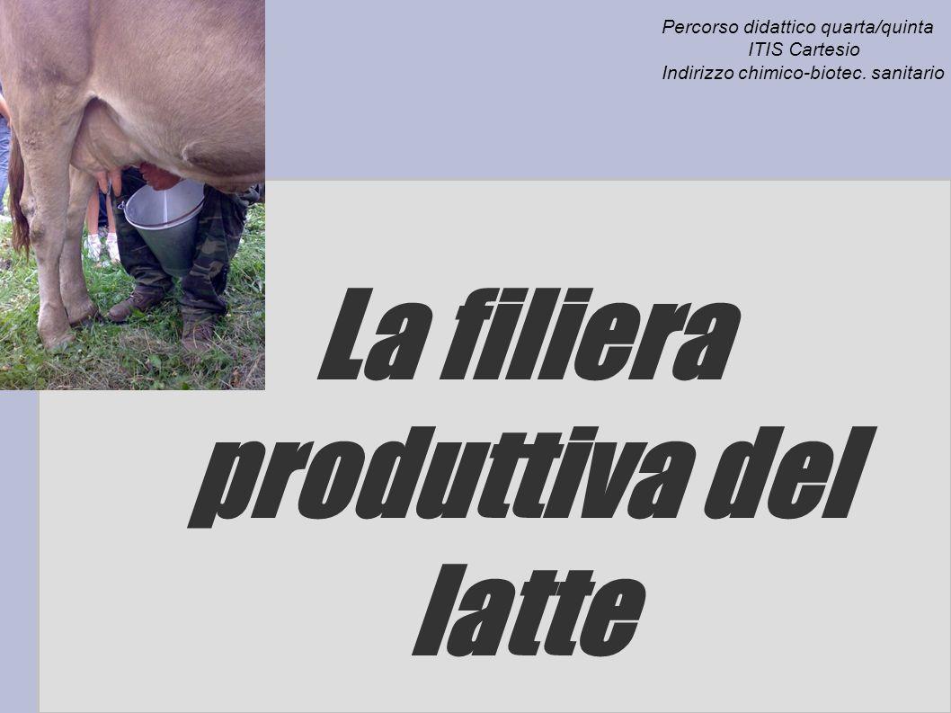La filiera produttiva del latte Percorso didattico quarta/quinta ITIS Cartesio Indirizzo chimico-biotec. sanitario