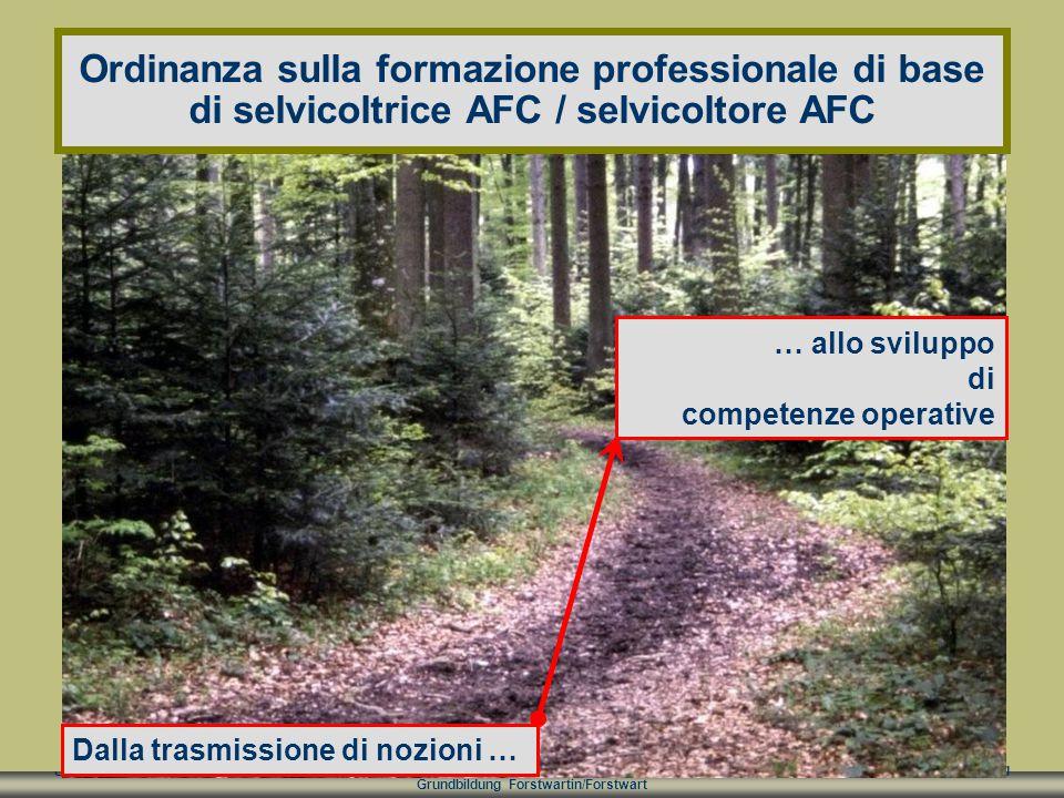 ﴀ OdA Wald - Reformkommission Forstwart - Verordnung Grundbildung Forstwartin/Forstwart OdA Wald - Reformkommission Forstwart - Verordnung Grundbildun
