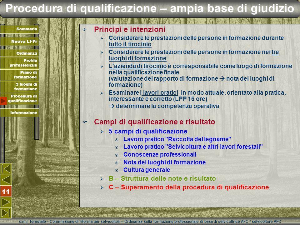 o.m.l. forestale – Commissione di riforma per selvicoltori – Ordinanza sulla formazione professionale di base di selvicoltrice AFC / selvicoltore AFC