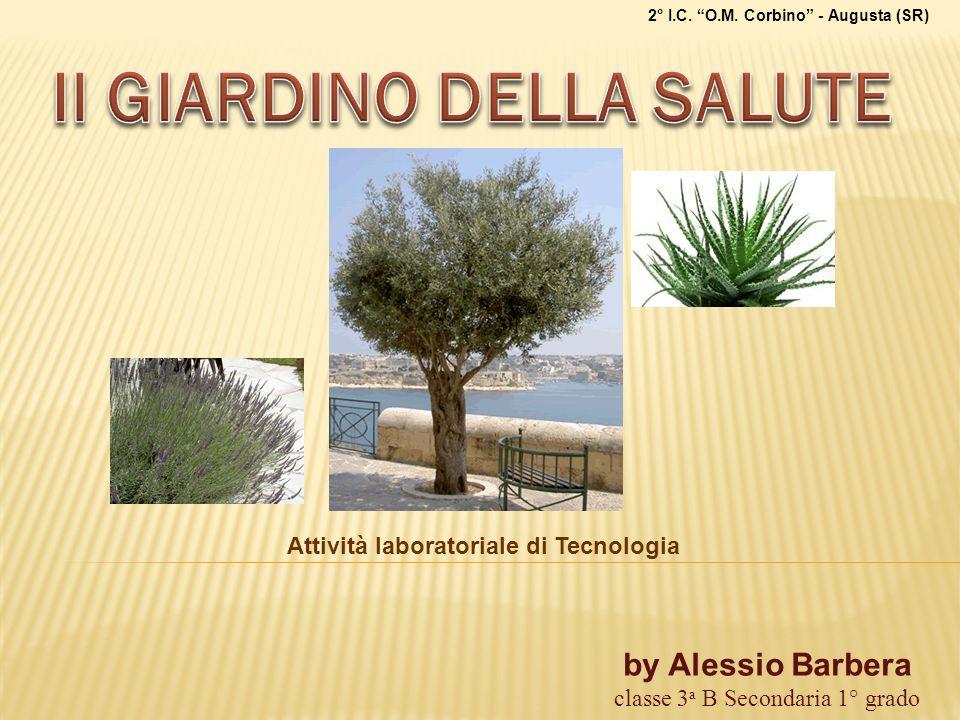 """by Alessio Barbera classe 3 a B Secondaria 1° grado 2° I.C. """"O.M. Corbino"""" - Augusta (SR) Attività laboratoriale di Tecnologia"""
