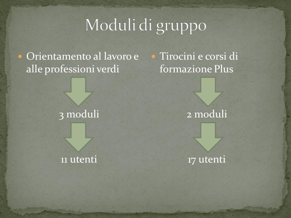 Orientamento al lavoro e alle professioni verdi 3 moduli 11 utenti Tirocini e corsi di formazione Plus 2 moduli 17 utenti