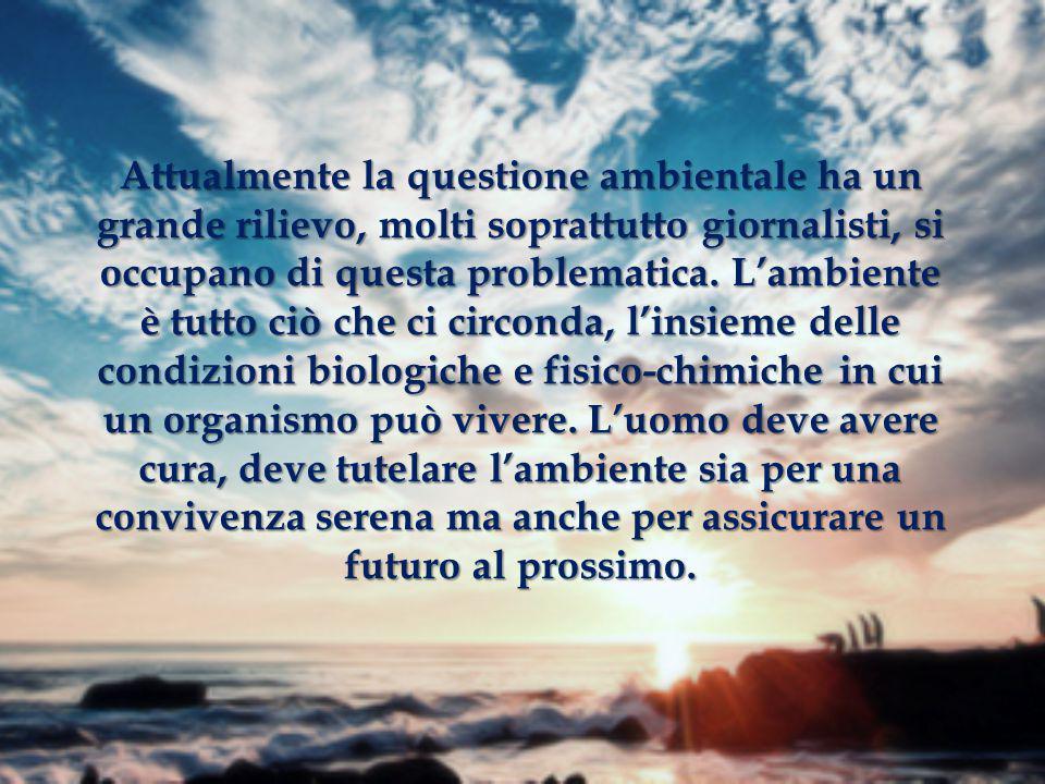   Raffaella Costanzo  Giuseppe Della Gatta  Angelo Piccolo  Antonietta Valeri  Mario Musella 2°M Liceo Scientifico E.