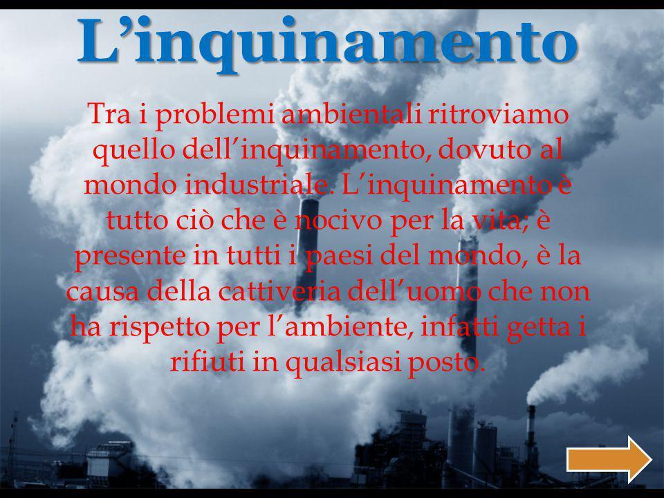 Tra i problemi ambientali ritroviamo quello dell'inquinamento, dovuto al mondo industriale.