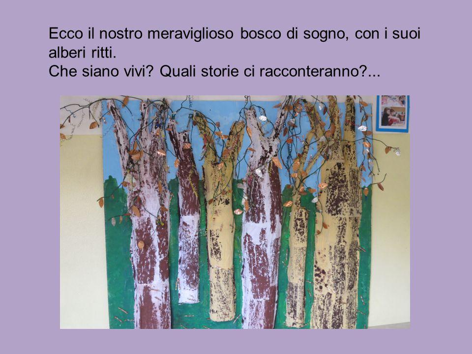 Ecco il nostro meraviglioso bosco di sogno, con i suoi alberi ritti. Che siano vivi? Quali storie ci racconteranno?...