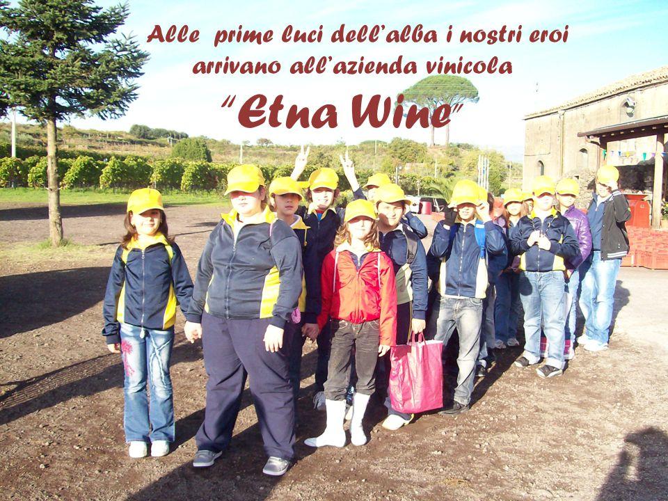Alle prime luci dell'alba i nostri eroi arrivano all'azienda vinicola Etna Wine