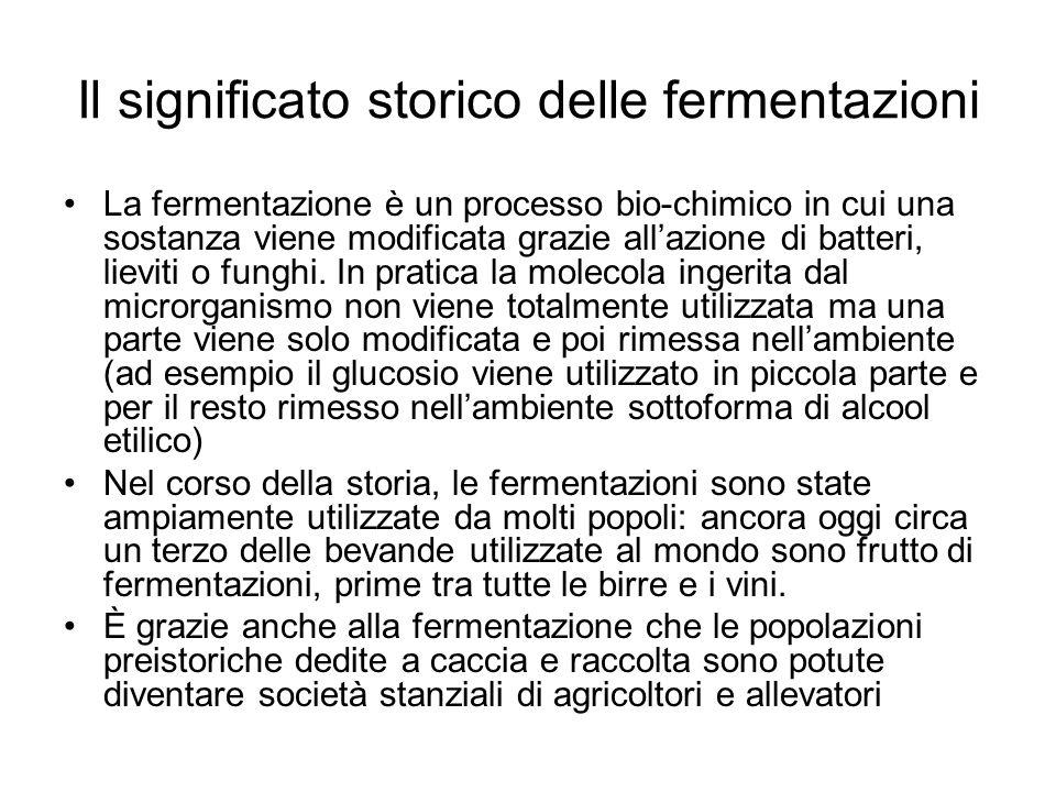 Il significato storico delle fermentazioni La fermentazione è un processo bio-chimico in cui una sostanza viene modificata grazie all'azione di batteri, lieviti o funghi.