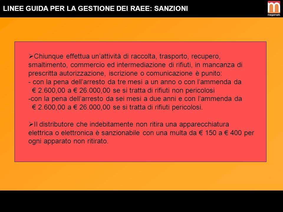 LINEE GUIDA PER LA GESTIONE DEI RAEE: Allegato IB deL D.Lgs. N°151/2005