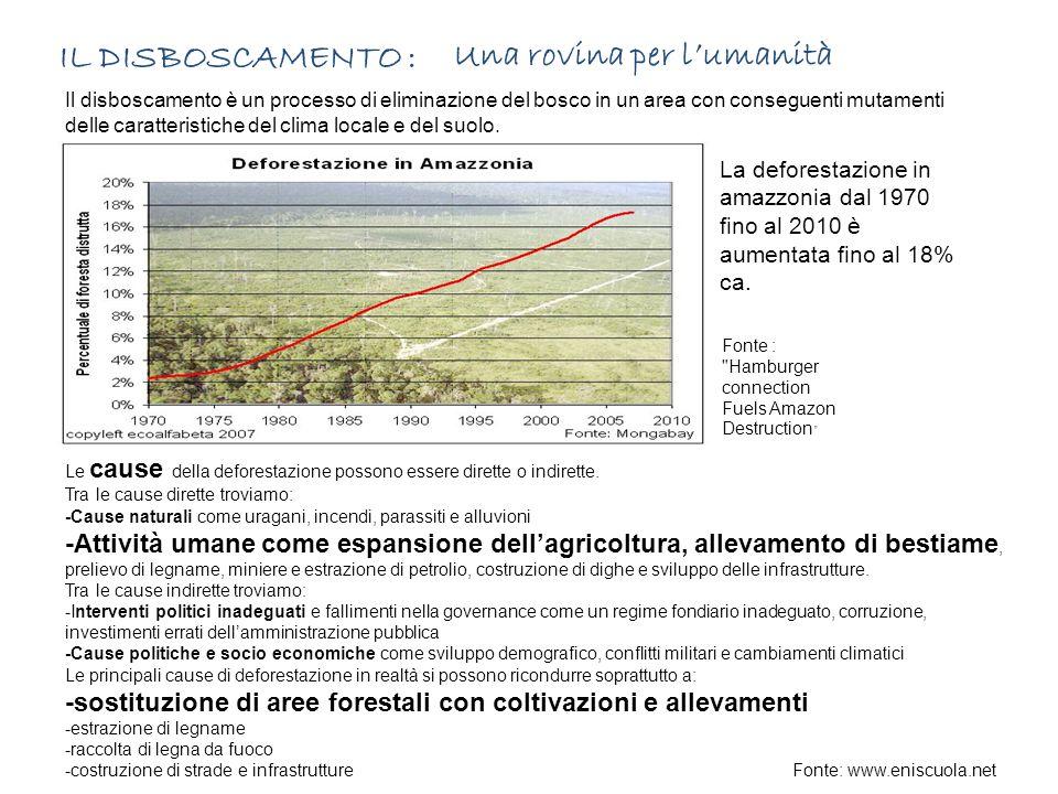IL DISBOSCAMENTO : Una rovina per l'umanità Il disboscamento è un processo di eliminazione del bosco in un area con conseguenti mutamenti delle caratteristiche del clima locale e del suolo.