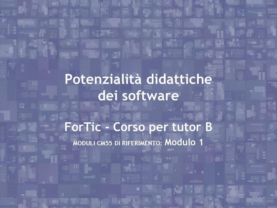 Potenzialità didattiche dei software ForTic - Corso per tutor B MODULI CM55 DI RIFERIMENTO: Modulo 1