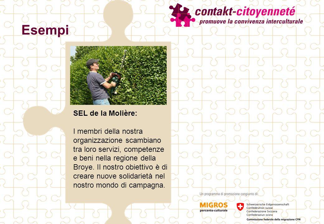 Esempi SEL de la Molière: I membri della nostra organizzazione scambiano tra loro servizi, competenze e beni nella regione della Broye.