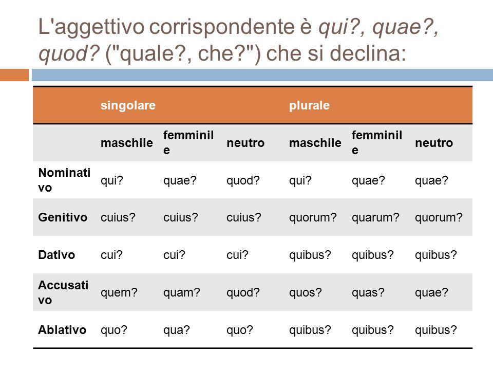 L'aggettivo corrispondente è qui?, quae?, quod? (