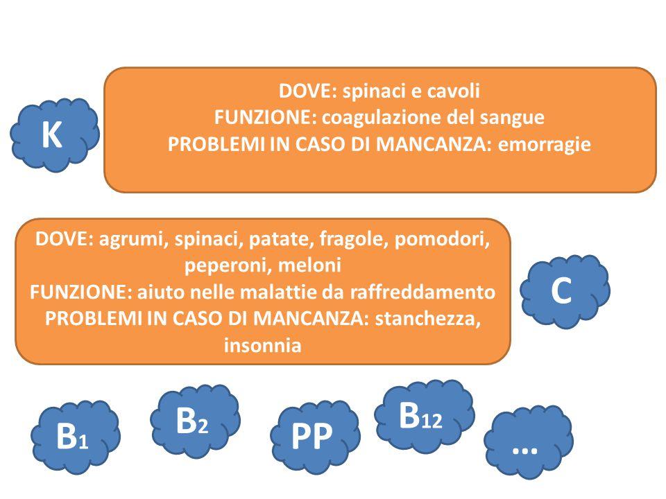 K C DOVE: spinaci e cavoli FUNZIONE: coagulazione del sangue PROBLEMI IN CASO DI MANCANZA: emorragie DOVE: agrumi, spinaci, patate, fragole, pomodori,