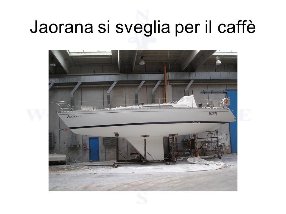 Jaorana si sveglia per il caffè