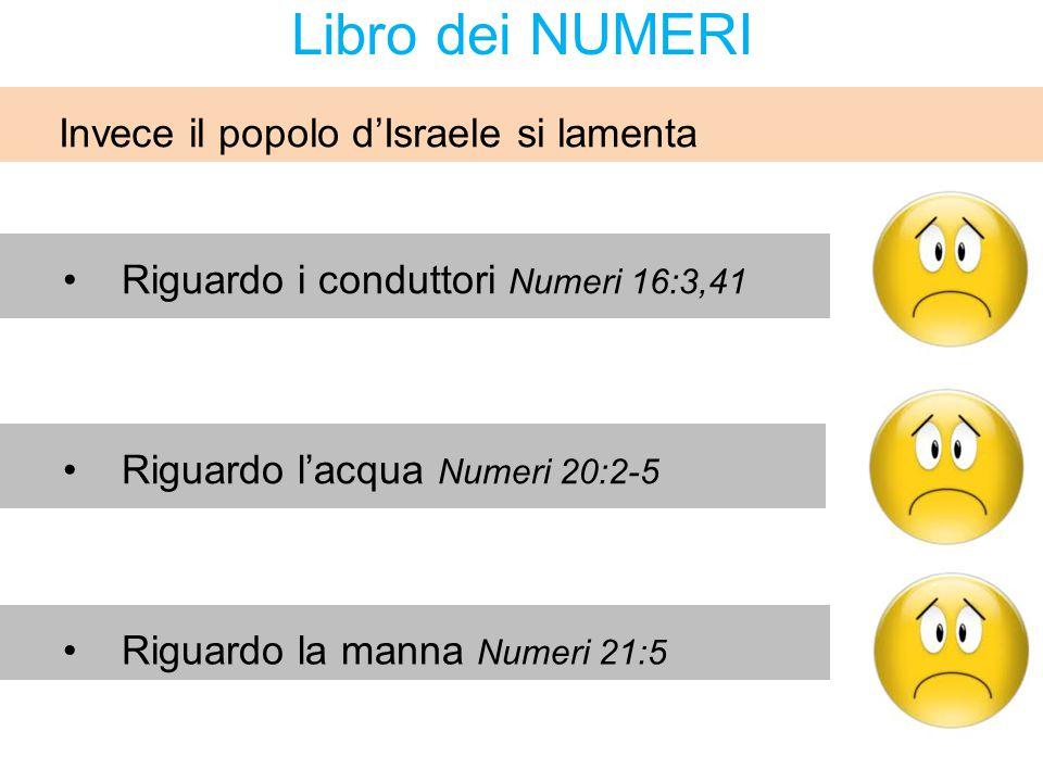 Libro dei NUMERI Riguardo i conduttori Numeri 16:3,41 Riguardo la manna Numeri 21:5 Riguardo l'acqua Numeri 20:2-5 Invece il popolo d'Israele si lamen