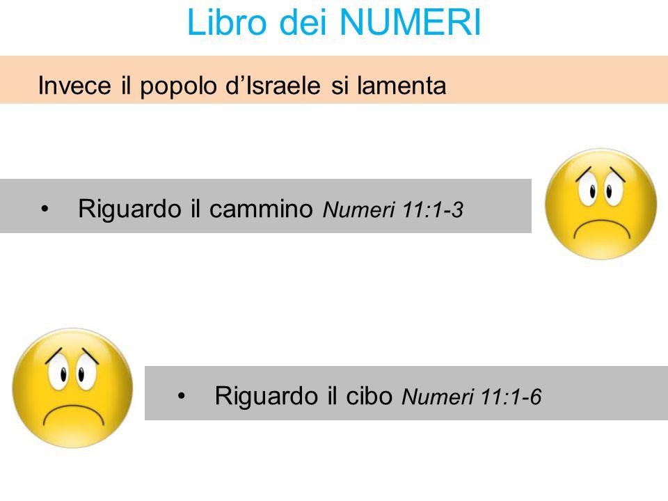 Riguardo il cammino Numeri 11:1-3 Riguardo il cibo Numeri 11:1-6 Invece il popolo d'Israele si lamenta