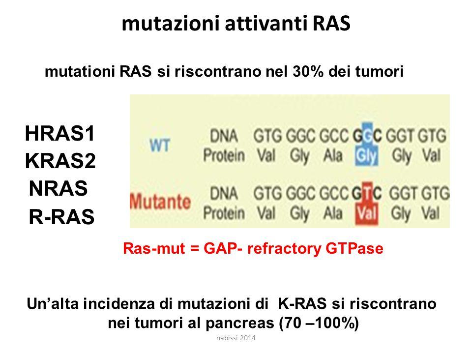 mutazioni attivanti RAS mutationi RAS si riscontrano nel 30% dei tumori HRAS1 KRAS2 NRAS Ras-mut = GAP- refractory GTPase Un'alta incidenza di mutazioni di K-RAS si riscontrano nei tumori al pancreas (70 –100%) R-RAS nabissi 2014