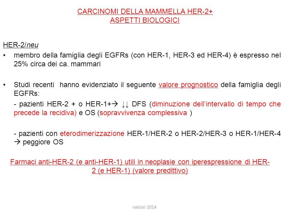 HER-2/neu membro della famiglia degli EGFRs (con HER-1, HER-3 ed HER-4) è espresso nel 25% circa dei ca.