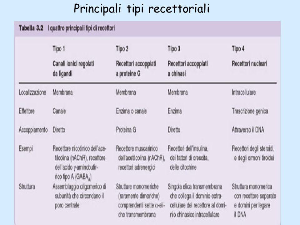 Principali tipi recettoriali