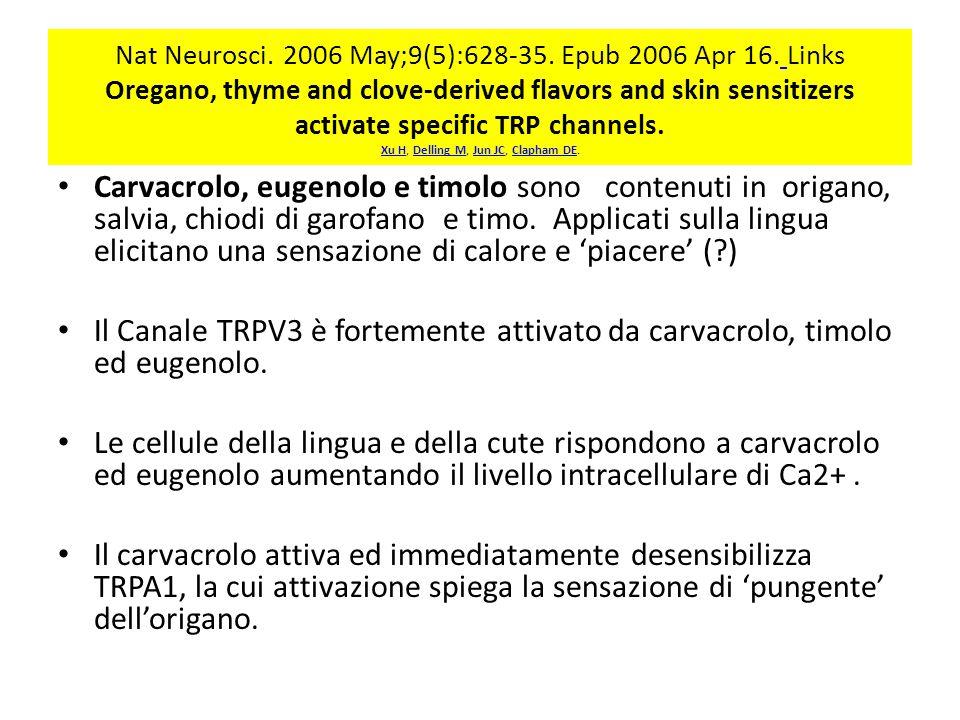 Nat Neurosci.2006 May;9(5):628-35. Epub 2006 Apr 16.