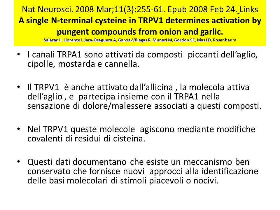 Nat Neurosci.2008 Mar;11(3):255-61. Epub 2008 Feb 24.