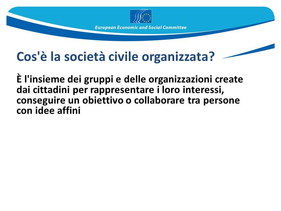 Cos'è la società civile organizzata? È l'insieme dei gruppi e delle organizzazioni create dai cittadini per rappresentare i loro interessi, conseguire