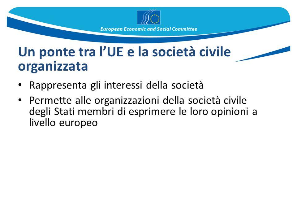 Un ponte tra l'UE e la società civile organizzata Rappresenta gli interessi della società Permette alle organizzazioni della società civile degli Stat