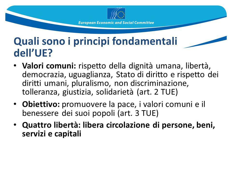 Quali sono i principi fondamentali dell'UE? Valori comuni: rispetto della dignità umana, libertà, democrazia, uguaglianza, Stato di diritto e rispetto