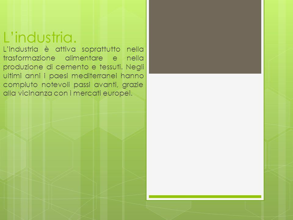 L'industria. L'industria è attiva soprattutto nella trasformazione alimentare e nella produzione di cemento e tessuti. Negli ultimi anni i paesi medit