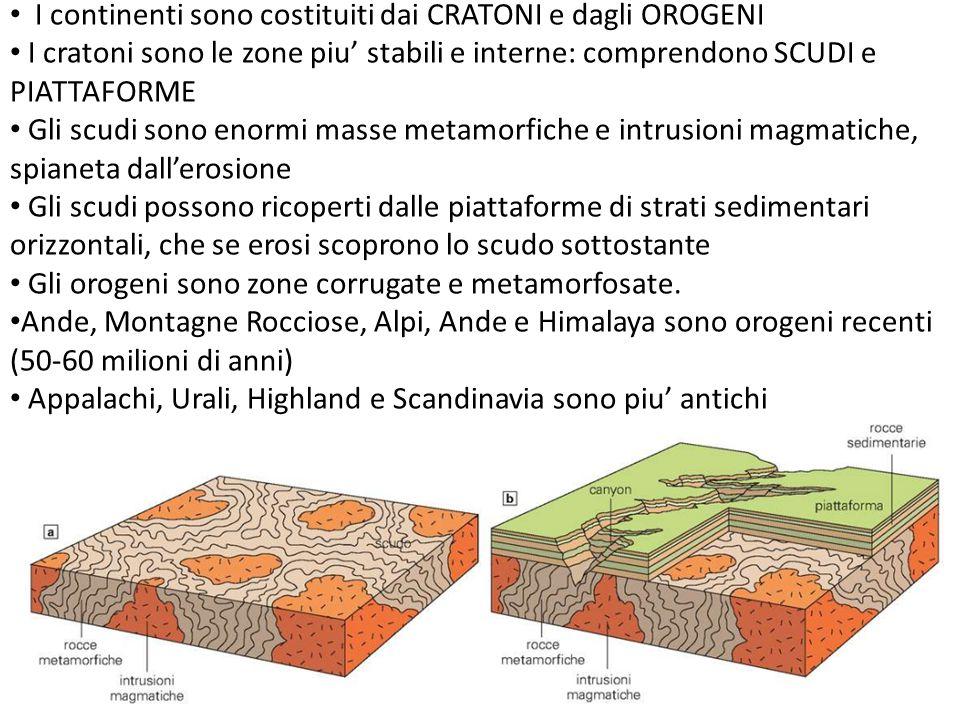 I continenti sono costituiti dai CRATONI e dagli OROGENI I cratoni sono le zone piu' stabili e interne: comprendono SCUDI e PIATTAFORME Gli scudi sono