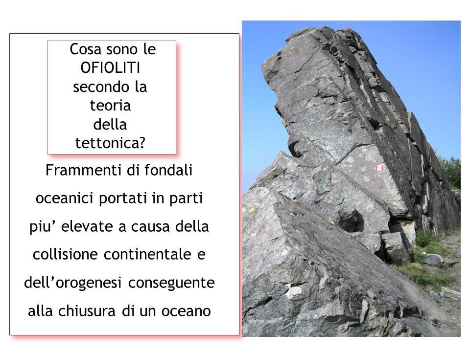 Cosa sono le OFIOLITI secondo la teoria della tettonica? Frammenti di fondali oceanici portati in parti piu' elevate a causa della collisione continen