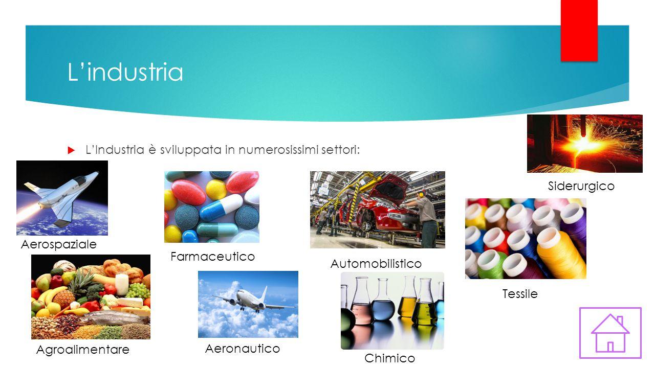 L'industria  L'Industria è sviluppata in numerosissimi settori: Aerospaziale Agroalimentare Aeronautico Farmaceutico Automobilistico Chimico Tessile