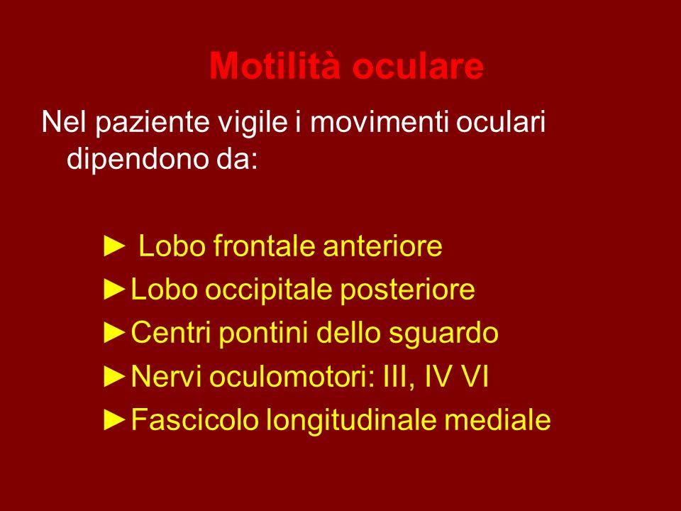 Motilità oculare Nel paziente vigile i movimenti oculari dipendono da: ► Lobo frontale anteriore ►Lobo occipitale posteriore ►Centri pontini dello sguardo ►Nervi oculomotori: III, IV VI ►Fascicolo longitudinale mediale