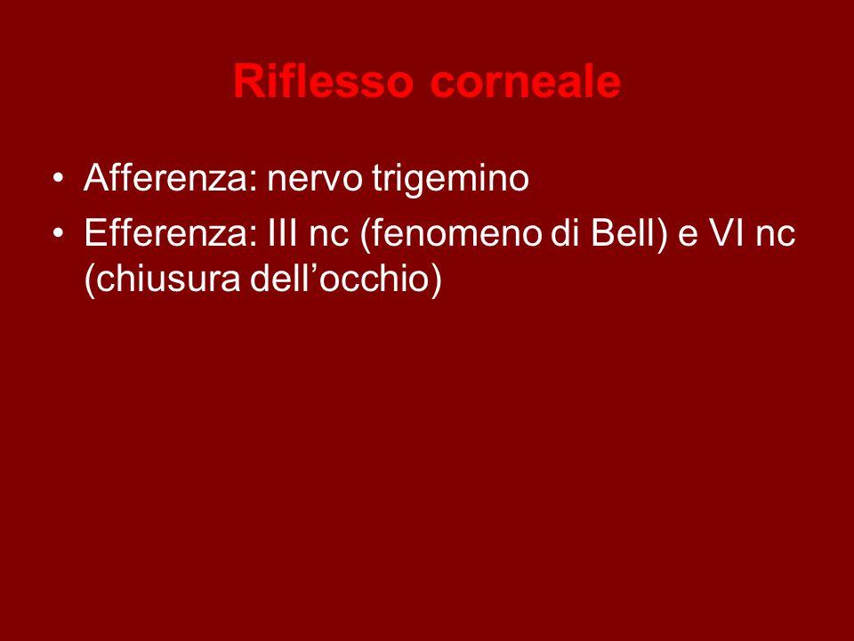 Riflesso corneale Afferenza: nervo trigemino Efferenza: III nc (fenomeno di Bell) e VI nc (chiusura dell'occhio)