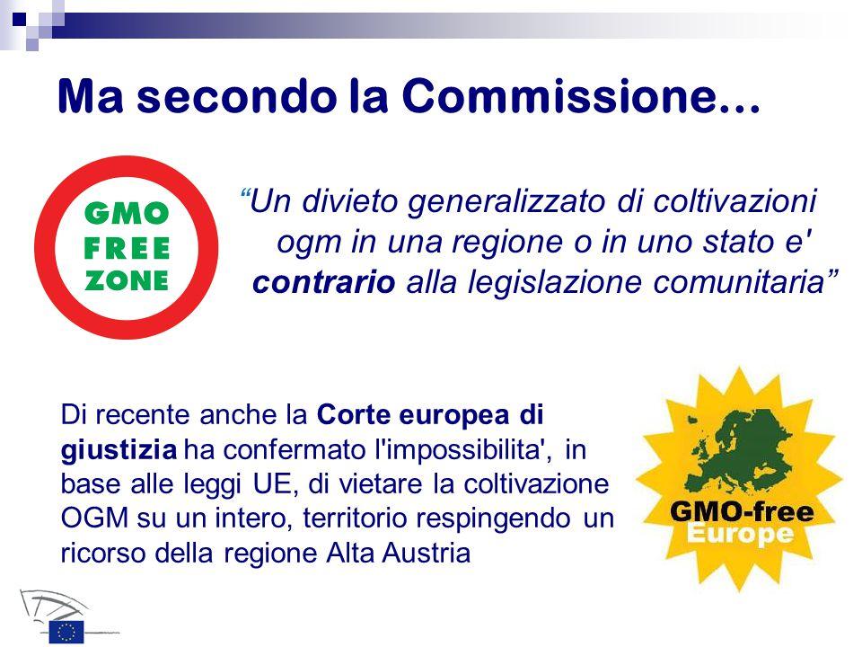 """Ma secondo la Commissione... """"Un divieto generalizzato di coltivazioni ogm in una regione o in uno stato e' contrario alla legislazione comunitaria"""" D"""