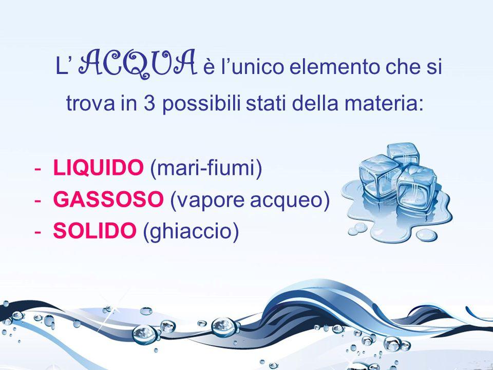 L' ACQUA è l'unico elemento che si trova in 3 possibili stati della materia: -LIQUIDO (mari-fiumi) -GASSOSO (vapore acqueo) -SOLIDO (ghiaccio)