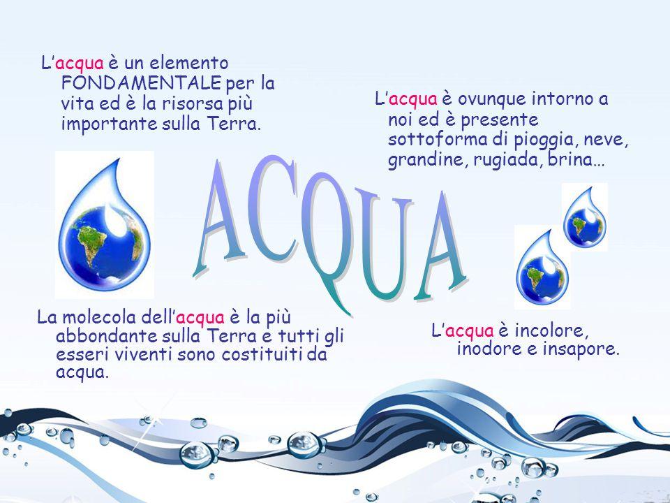 L'acqua è un elemento FONDAMENTALE per la vita ed è la risorsa più importante sulla Terra. L'acqua è incolore, inodore e insapore. L'acqua è ovunque i