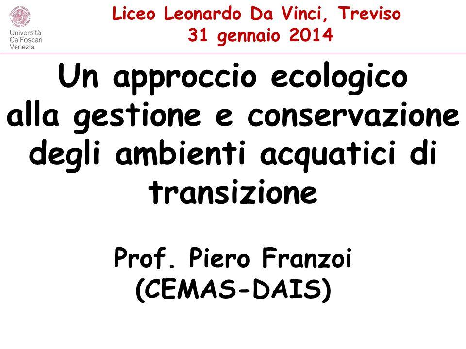 Un approccio ecologico alla gestione e conservazione degli ambienti acquatici di transizione Prof. Piero Franzoi (CEMAS-DAIS) Liceo Leonardo Da Vinci,