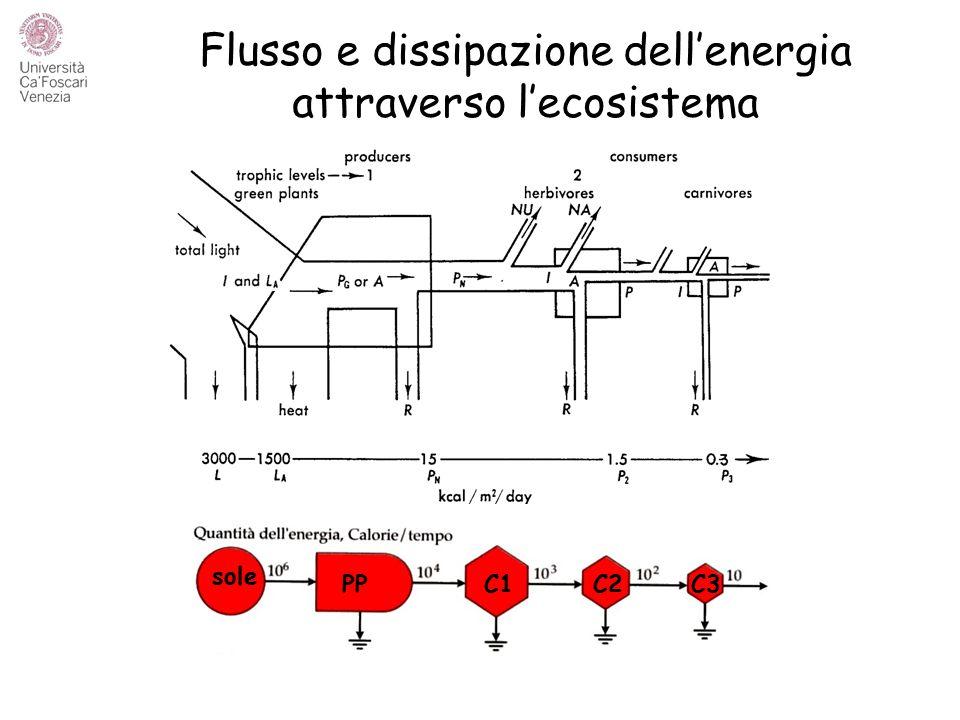 Flusso e dissipazione dell'energia attraverso l'ecosistema sole PPC1C2C3