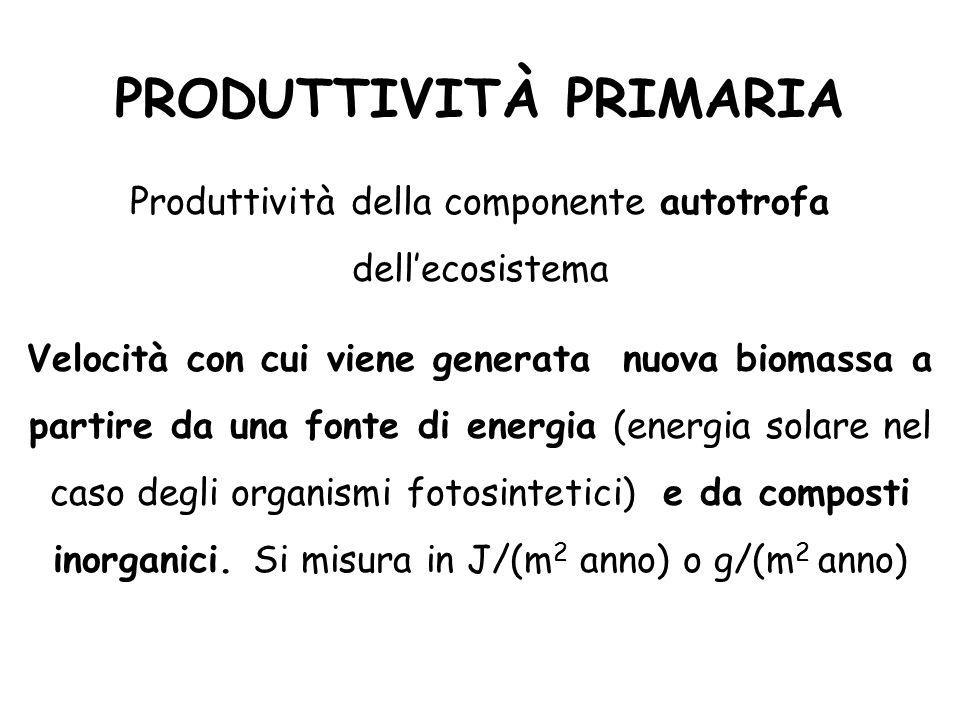 PRODUTTIVITÀ PRIMARIA Produttività della componente autotrofa dell'ecosistema Velocità con cui viene generata nuova biomassa a partire da una fonte di