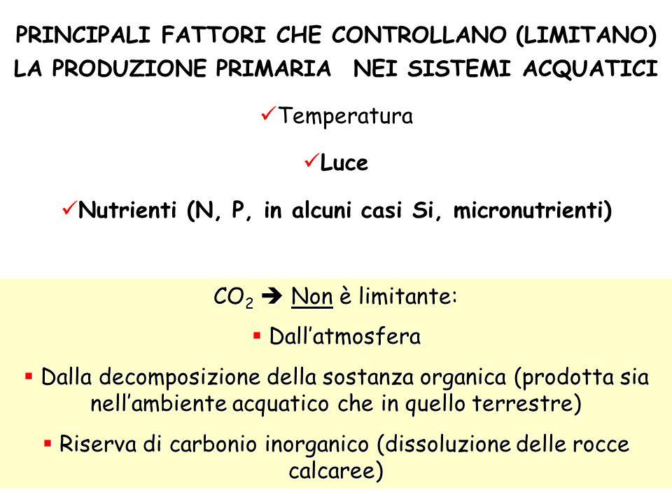 PRINCIPALI FATTORI CHE CONTROLLANO (LIMITANO) LA PRODUZIONE PRIMARIA NEI SISTEMI ACQUATICI Temperatura Luce ) Nutrienti (N, P, in alcuni casi Si, micr