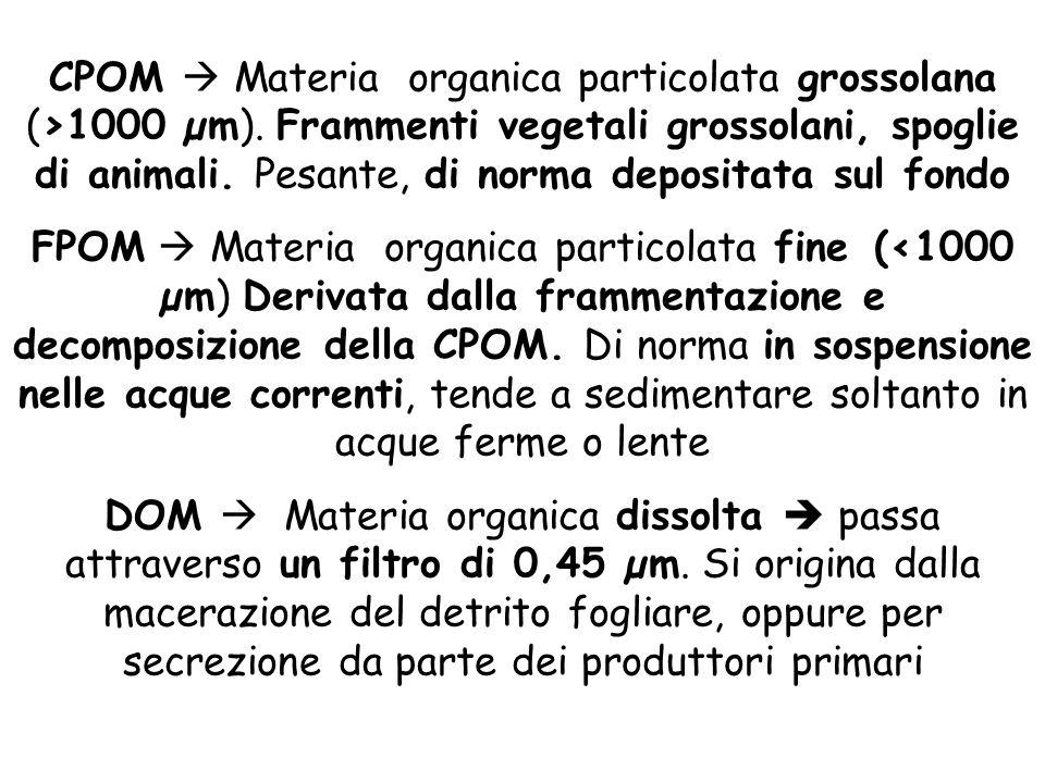 CPOM  Materia organica particolata grossolana (>1000 µm). Frammenti vegetali grossolani, spoglie di animali. Pesante, di norma depositata sul fondo F