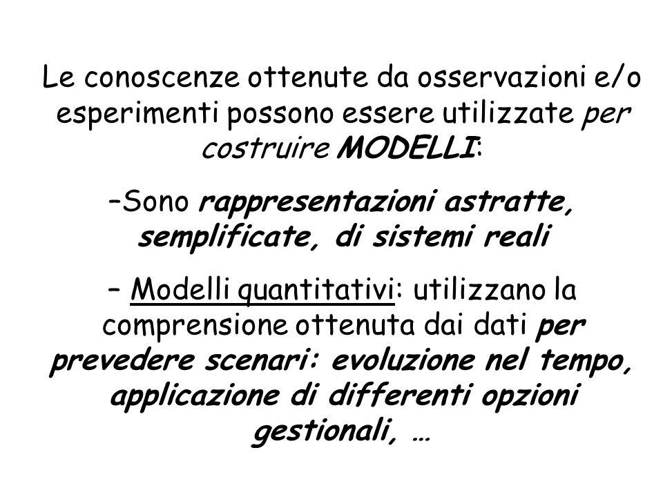 Le conoscenze ottenute da osservazioni e/o esperimenti possono essere utilizzate per costruire MODELLI: –Sono rappresentazioni astratte, semplificate,