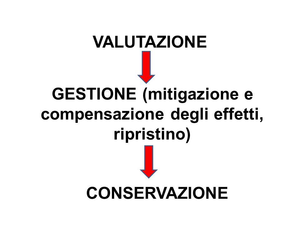 VALUTAZIONE GESTIONE (mitigazione e compensazione degli effetti, ripristino) CONSERVAZIONE