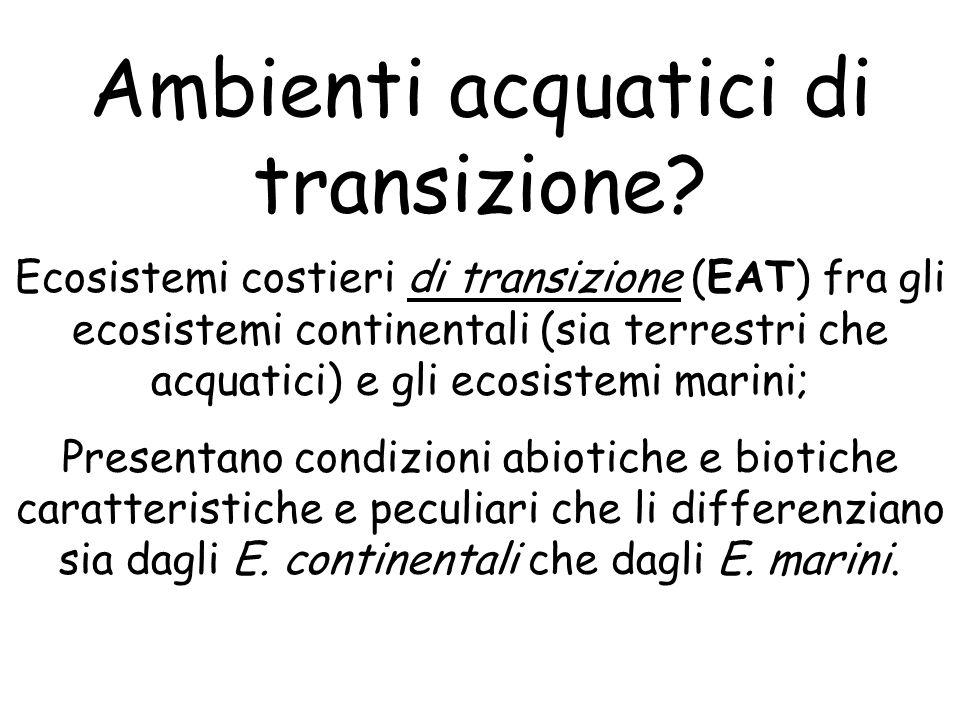 Ambienti acquatici di transizione? Ecosistemi costieri di transizione (EAT) fra gli ecosistemi continentali (sia terrestri che acquatici) e gli ecosis