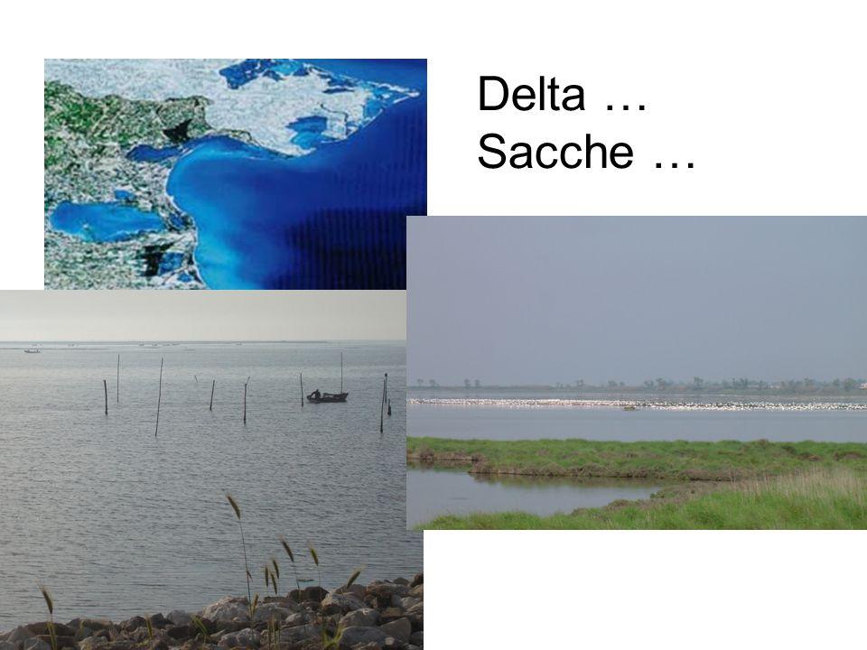 Delta … Sacche …