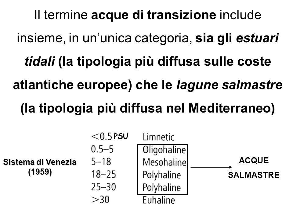 Il termine acque di transizione include insieme, in un'unica categoria, sia gli estuari tidali (la tipologia più diffusa sulle coste atlantiche europe