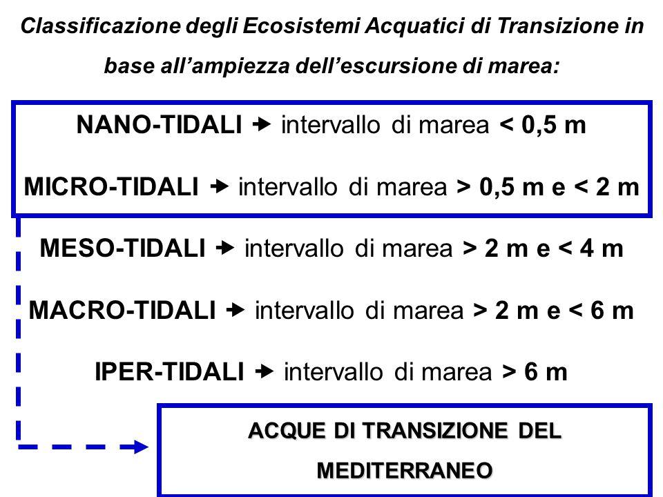 ACQUE DI TRANSIZIONE DEL MEDITERRANEO Classificazione degli Ecosistemi Acquatici di Transizione in base all'ampiezza dell'escursione di marea: NANO-TI